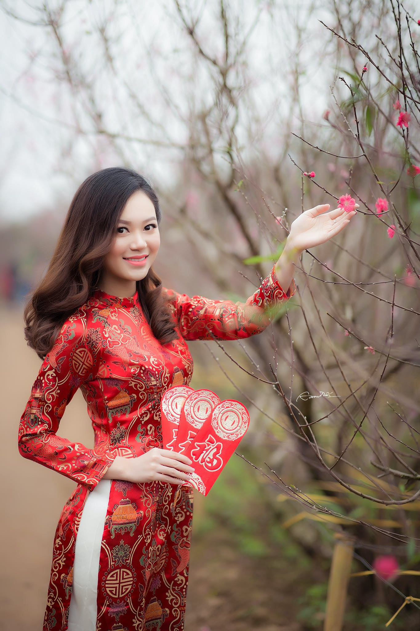 Woman Wearing Red Long-sleeved Dress Holding Pink Petaled Flower