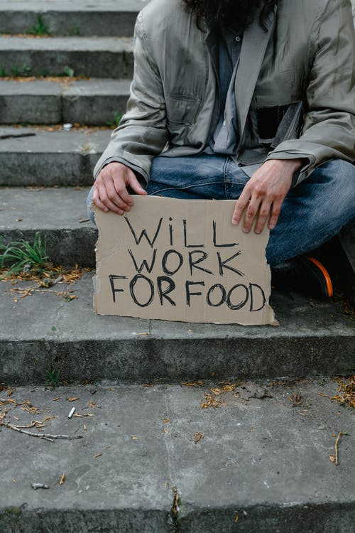 Free stock photo of adult, banner, beggar