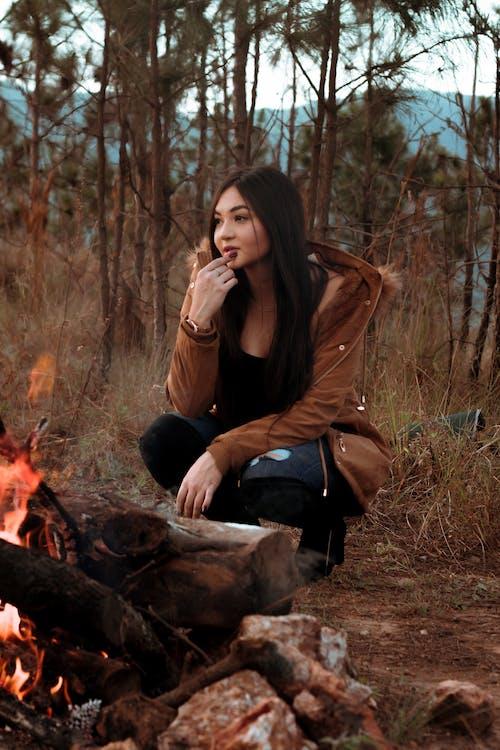 Kostenloses Stock Foto zu baum, brennholz, draußen