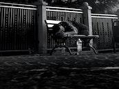 bench, black-and-white, man