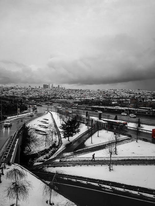 Cityscape in Black and White Photo