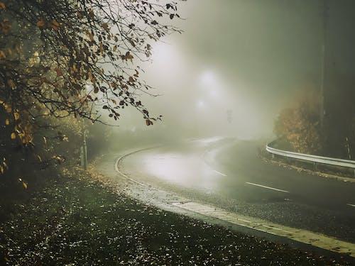 Foto profissional grátis de assustador, denso fogg, Estocolmo