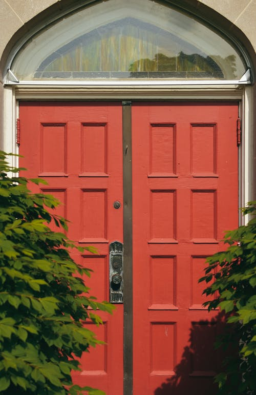 Photo of a Red Wooden Door With Green Leaves