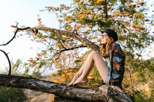 Gadis Muda Duduk Di Pohon