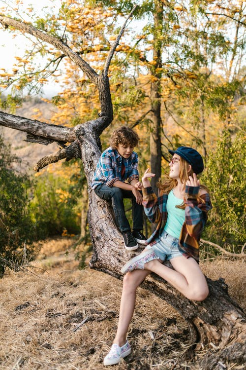 Kids Sitting on a Tree