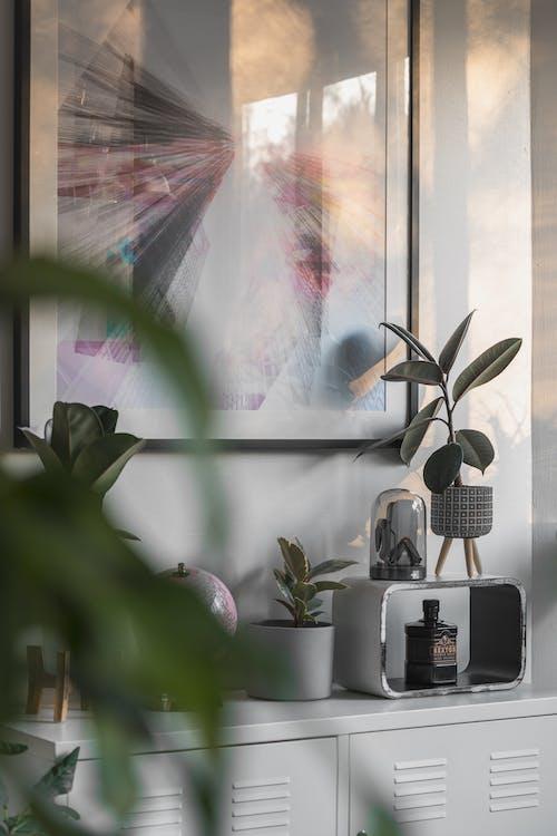 Fotobanka sbezplatnými fotkami na tému architektúra, dom, flóra