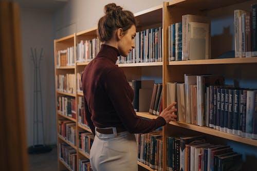 圖書館, 女人, 室內 的 免費圖庫相片