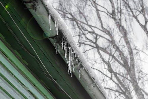 คลังภาพถ่ายฟรี ของ ดินแดนมหัศจรรย์แห่งฤดูหนาว, น้ำแข็งย้อย, มินิมอล, ฤดูหนาว