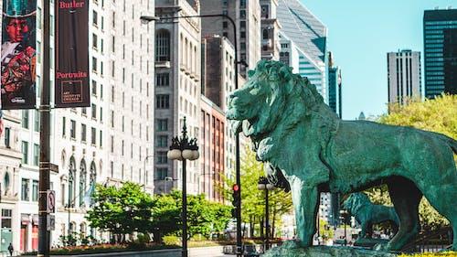 Foto profissional grátis de ao ar livre, arquitetura, centro comercial