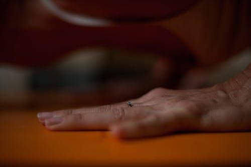 Free stock photo of acro yoga, home yoga, yoga details