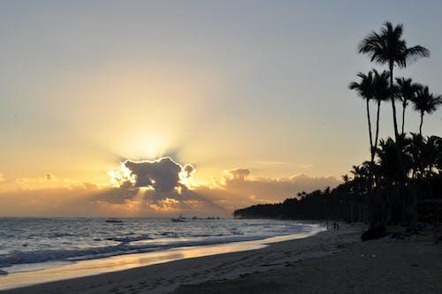Gratis lagerfoto af atlantic, dominicana, idyl, idyllisk