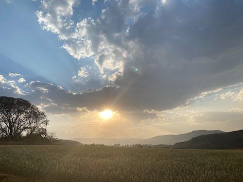 Photos gratuites de afrique, beau coucher de soleil, ciel bleu