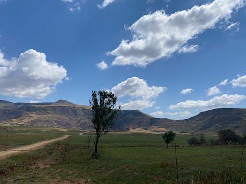 Photos gratuites de afrique, ciel bleu, montagnes vertes