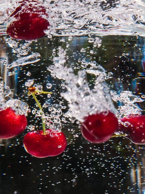 H2O, ICEE, 不堅固的 的 免费素材图片