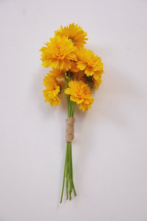 Yellow Flowers on White Wall