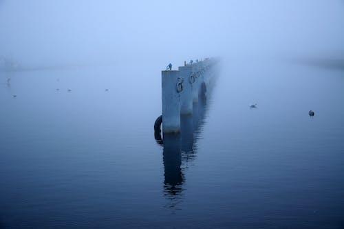 Gratis lagerfoto af baltic, dis, diset, hav
