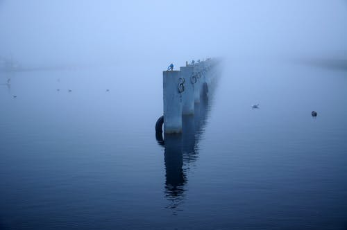 Free stock photo of Baltic, Baltic Sea, fog, foggy