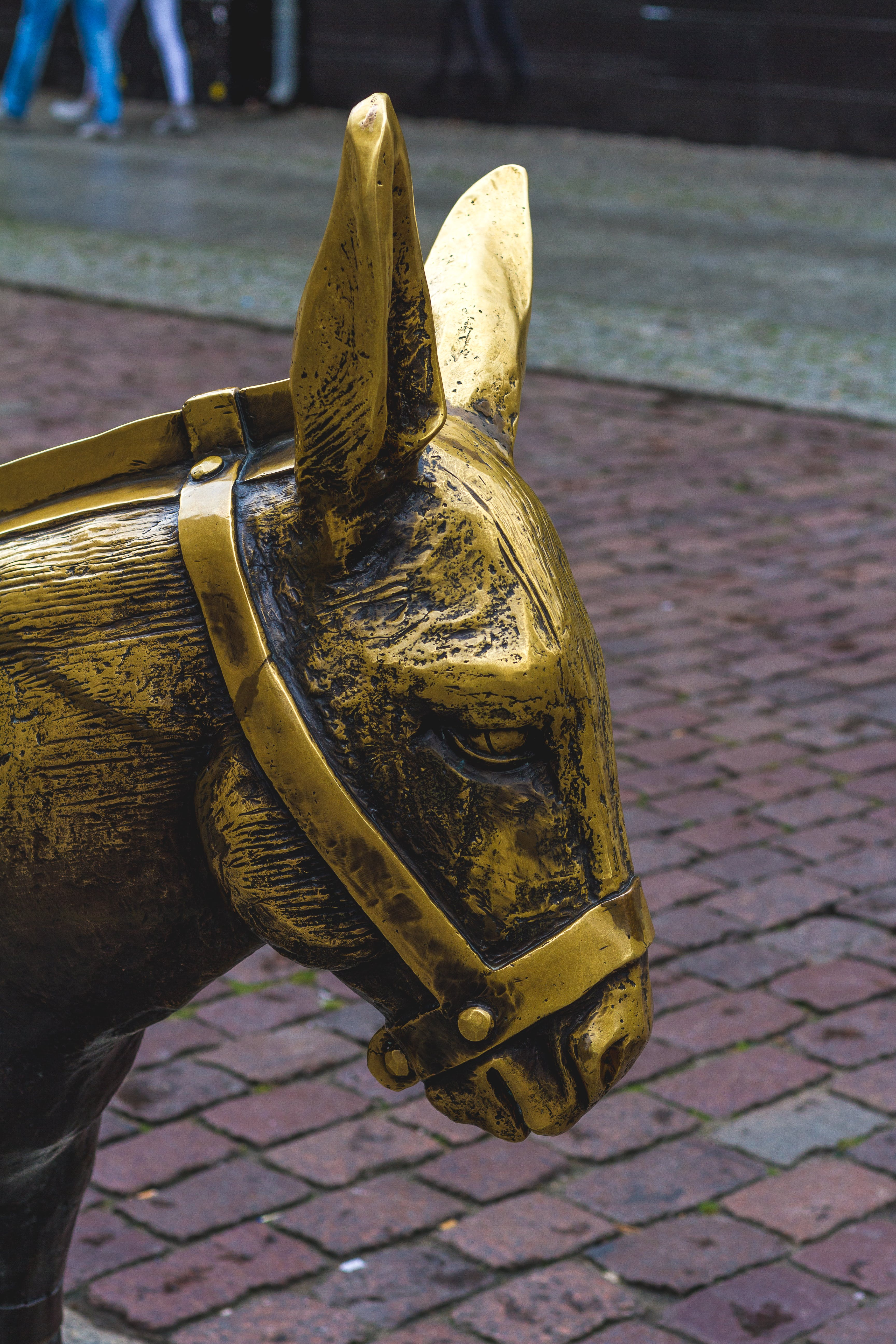 Free stock photo of art, donkey, golden, horse