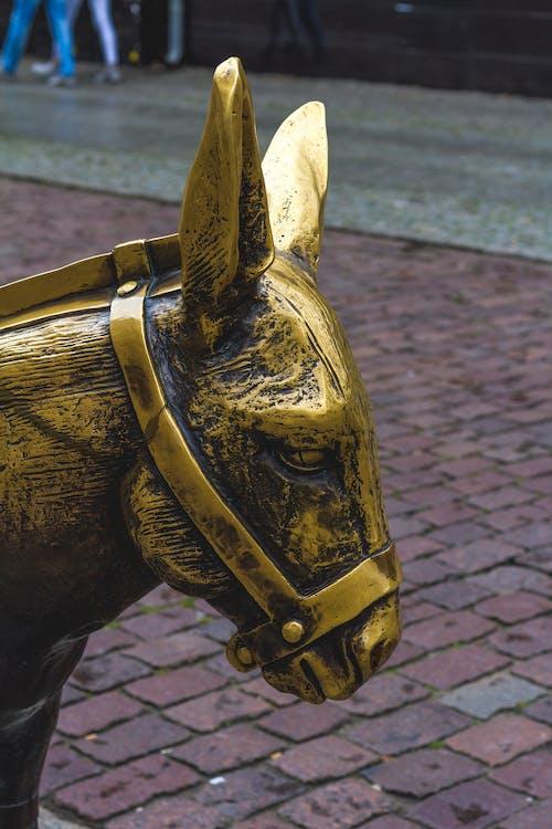 Gratis stockfoto met beeld, ezel, gouden, kunst
