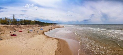 Gratis stockfoto met bomen, golven, kust, mensen