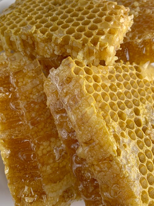 Delicious Honeycomb Filled with Honey