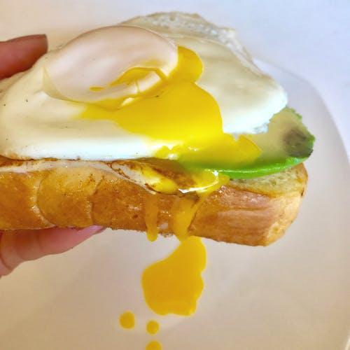 蛋黃, 鸡蛋三明治 的 免费素材照片