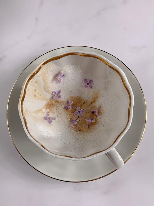 도자기, 라일락, 보라색 꽃의 무료 스톡 사진