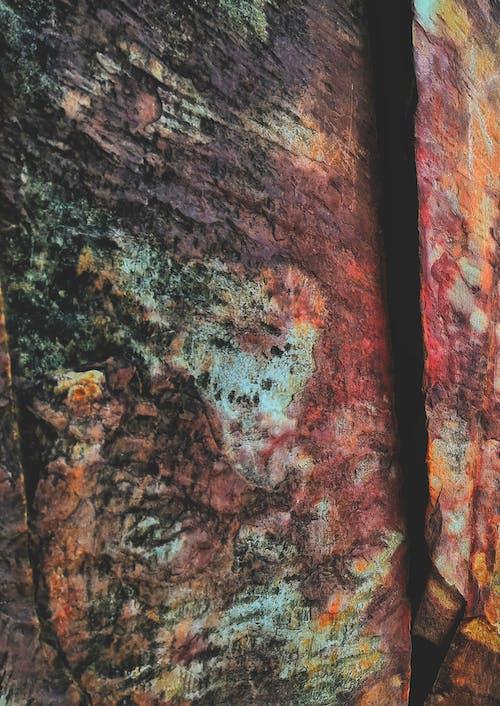 Immagine gratuita di antico, bellezza nella natura, colorato