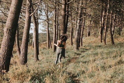 Foto profissional grátis de activewear, árvores, corrida