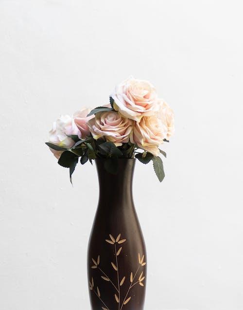 Foto profissional grátis de □ gentil, aroma, aromático
