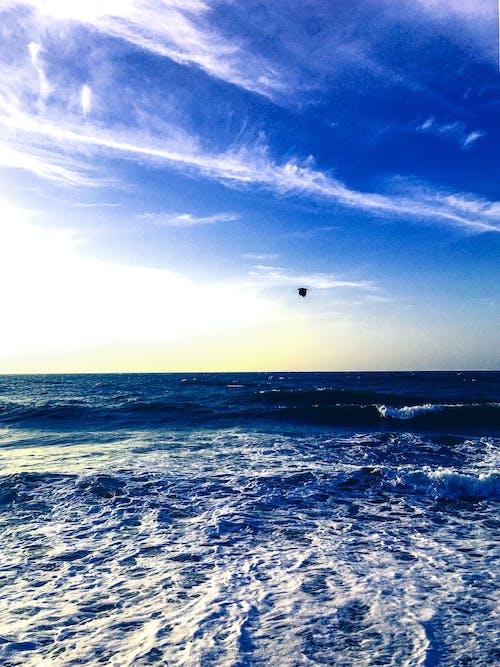 Foto d'estoc gratuïta de acomiadar-se, aigua, cel, Escuma de mar