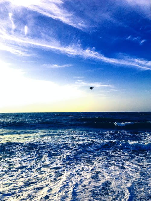 Kostnadsfri bild av hav, havsområde, havsskum, havsstrand