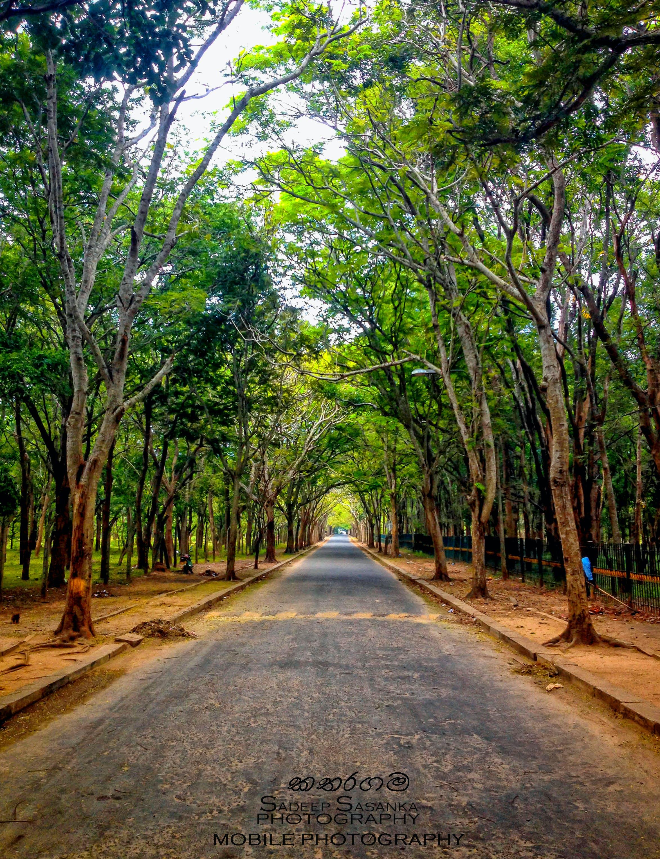 katharagama, mobile photography, sri lanka
