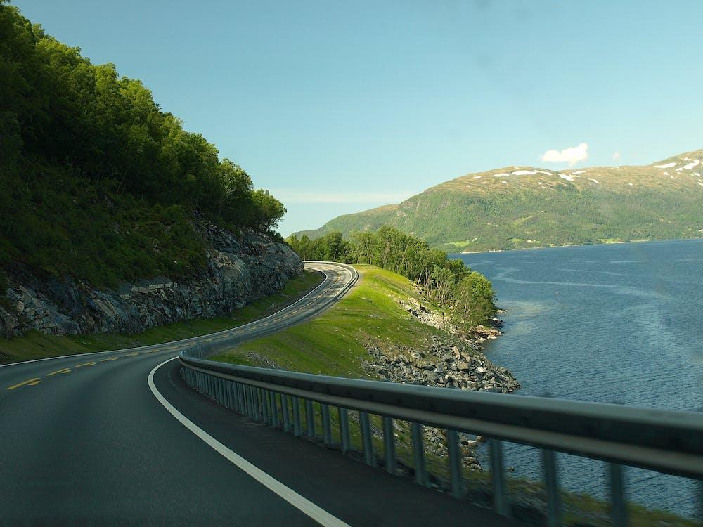 asfalt, autorijden, bomen
