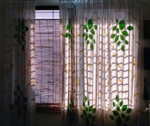 gün ışığı içeren Ücretsiz stok fotoğraf