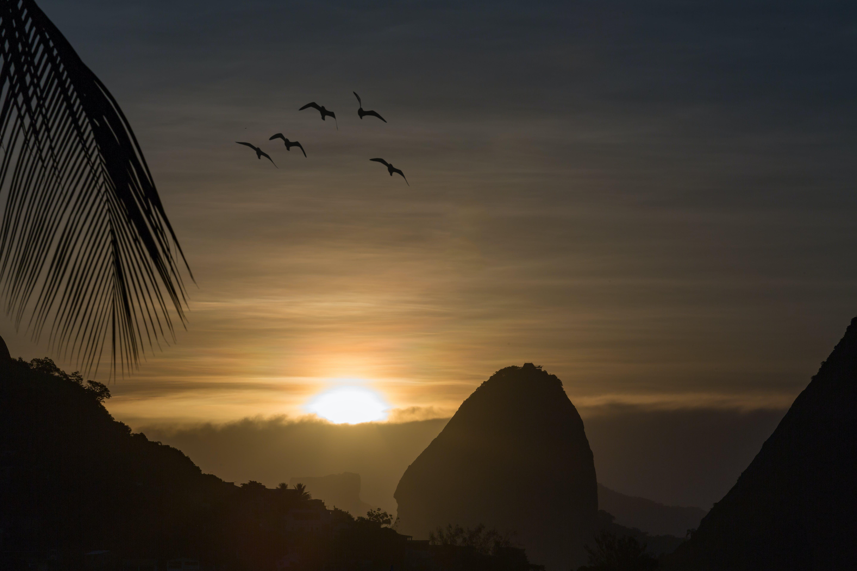 Free stock photo of niterói, rio de janeiro