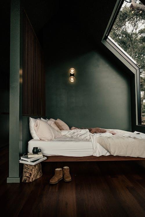Бесплатное стоковое фото с в помещении, гостиница, дерево