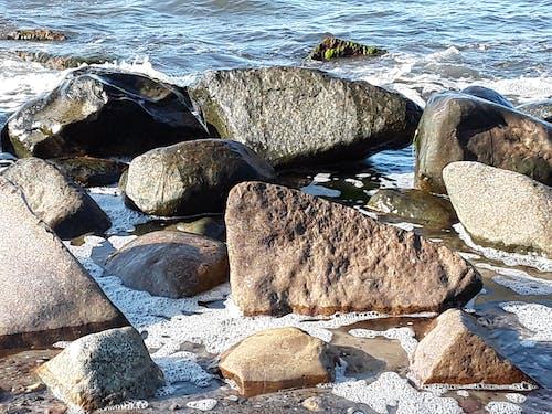 steinig, 在海邊, 海滨 的 免费素材图片