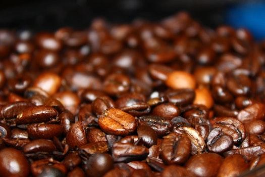 Coffee Beans in Macro Lens
