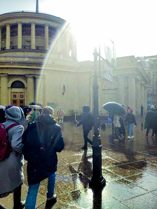 Gratis arkivbilde med parasoll, regn