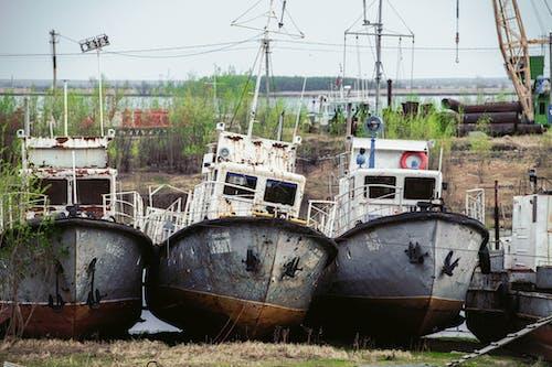 Gratis arkivbilde med båt, container, elv