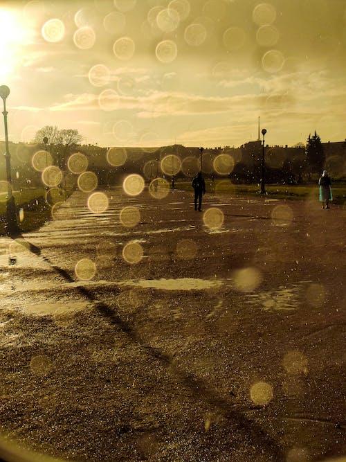 Gratis arkivbilde med regndråper