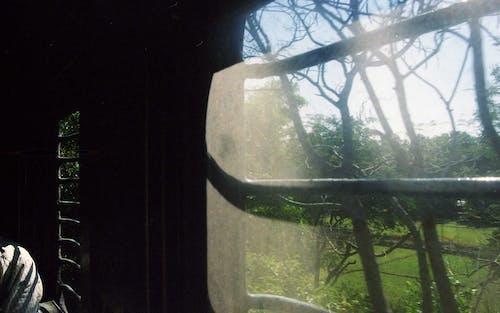 Free stock photo of 35mm, analog, isnide train, train