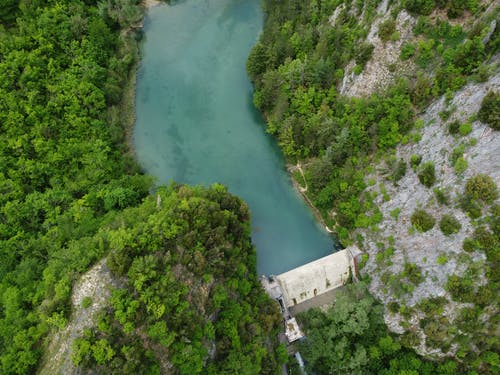Aerial View of River Between Green Trees