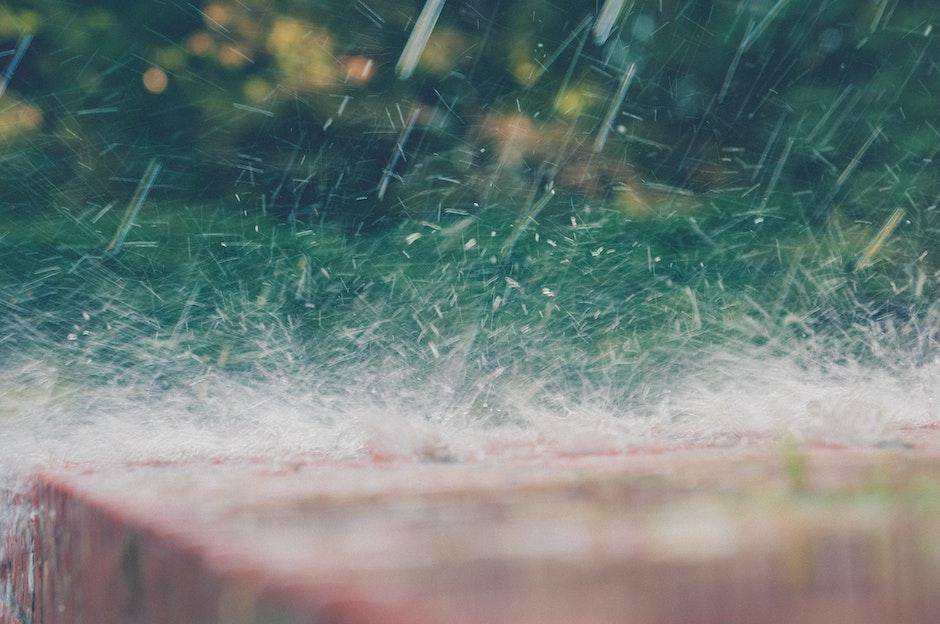 close-up, rain, splash