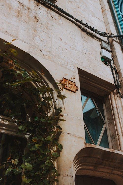 Gratis stockfoto met achtergelaten, architectuur, bederf