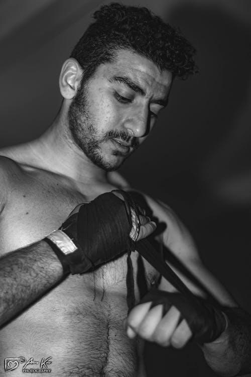 Ilmainen kuvapankkikuva tunnisteilla lihaksikas
