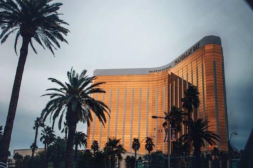 カジノ, シティ, ホテル, モダンの無料の写真素材