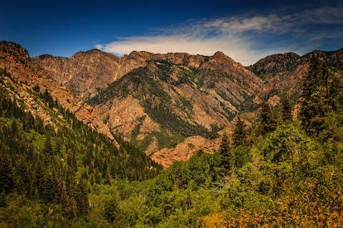 Brown Rocky Mountain Photo