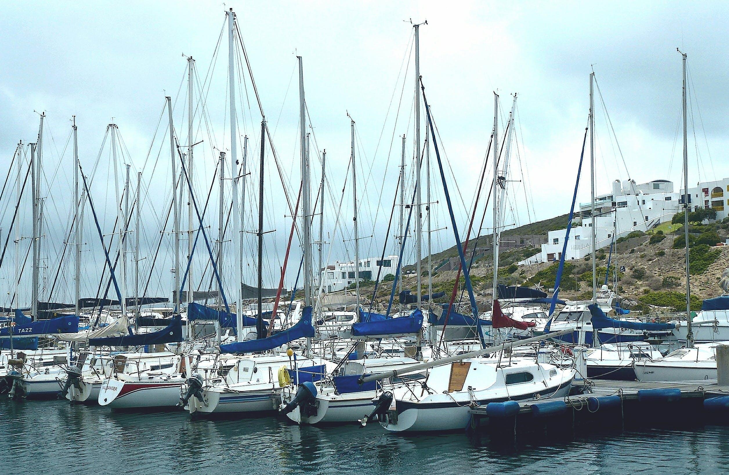 Free stock photo of marina, masts, yachts